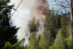 W Dolinie Danielki - pożar lasu