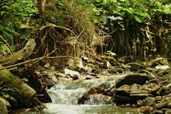 Nad potokiem Danielka
